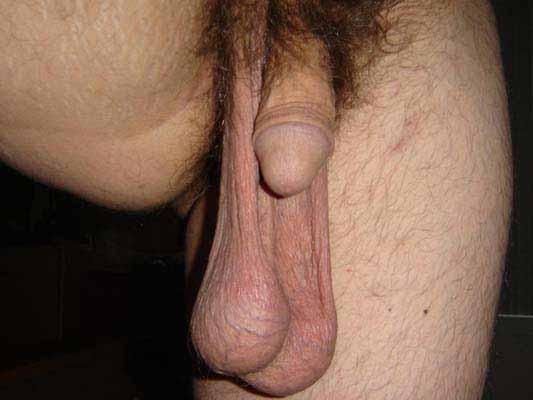 большие мужские яички на фото